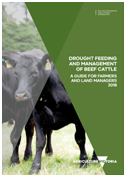Cover image of the drought book for beef cattle.