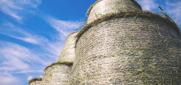 Large grass bales and blue sky